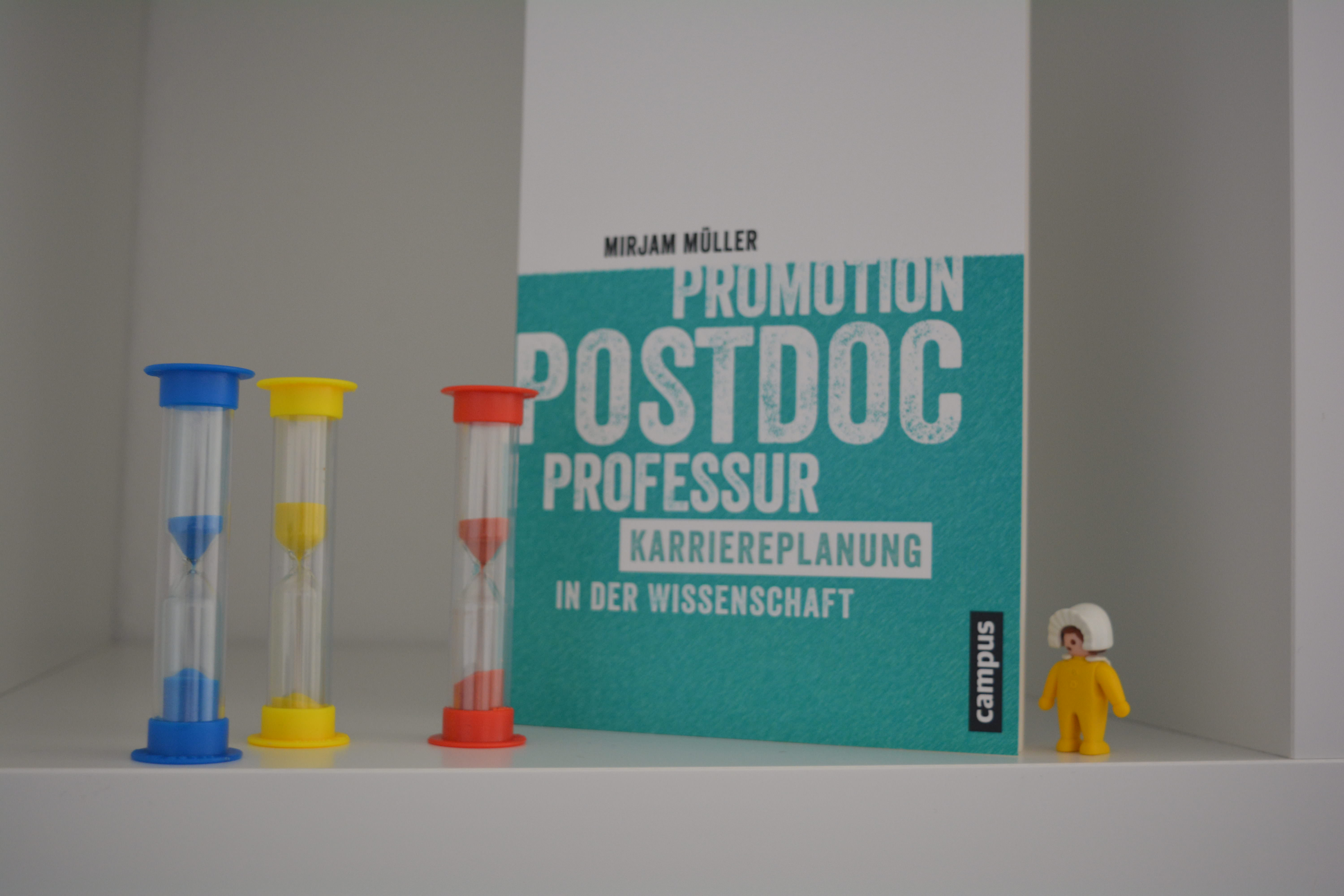Promotion – Postdoc – Professur