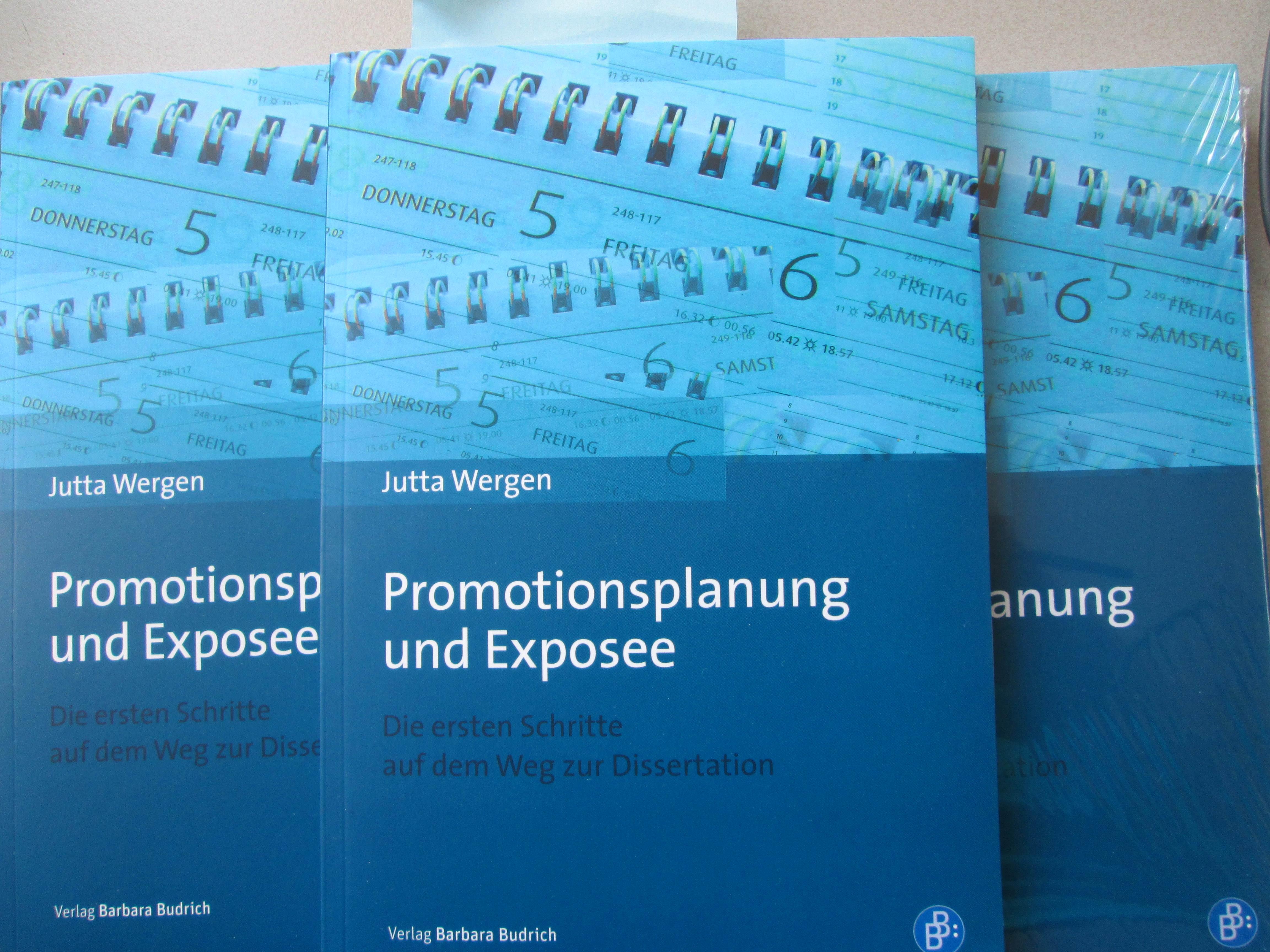 Promotionsplanung und Exposee schreiben