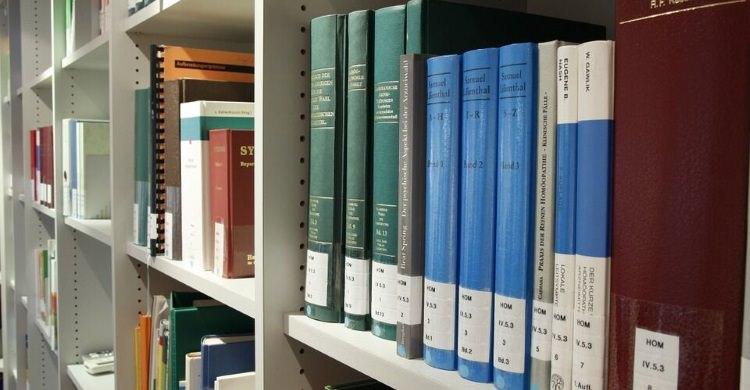 Dissertation online oder verlag