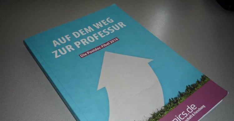 Auf dem Weg zur Professur: Die Postdoc-Fibel 2016