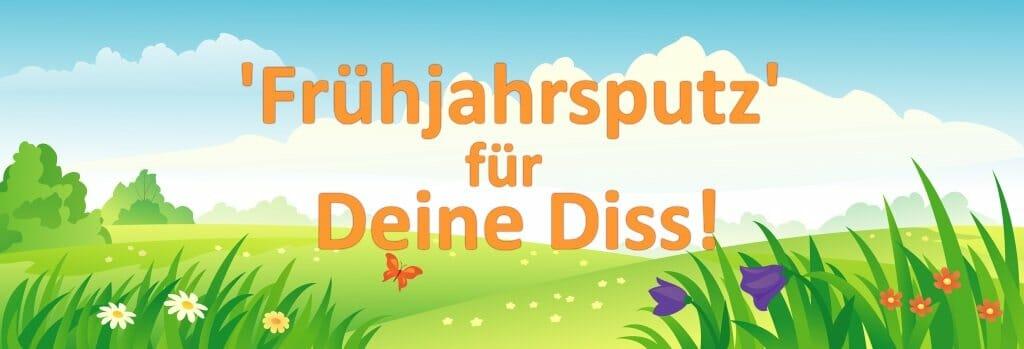 Fruehjahrsputz Promotion